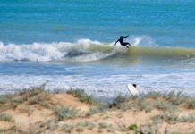 surf meia praia lagos