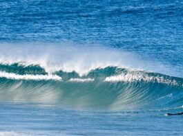surfers more likely to develop skin cancer